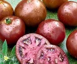 Томат Сахар коричневый: характеристика и описание сорта, урожайность отзывы фото