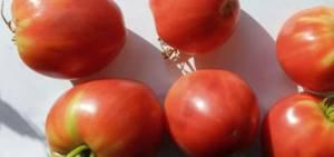 Томат Розовый Мед характеристика и описание сорта урожайностьи фото