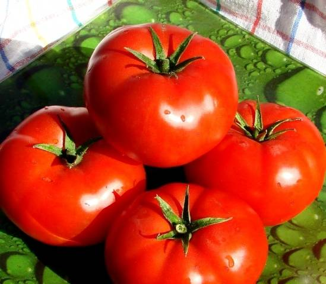 Томат Президент (f1): описание гибрида помидоров, фото и отзывы о его урожайности и сложностях выращивания