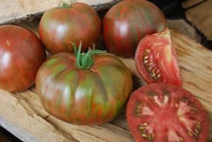Томат Стопудовый характеристика и описание сорта урожайность и отзывы
