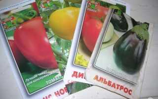 Отзыв о Семена Поиск Баклажан Альбатрос, Мой первый опыт