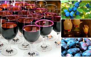 Вкусный и простой рецепт домашнего вина из слив