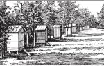 Пасечный домик — для хранения инвентаря и ряда работ