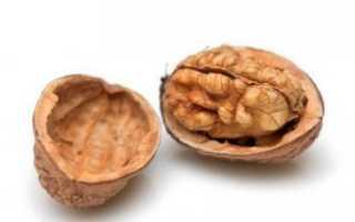 Скорлупа грецкого ореха: применение