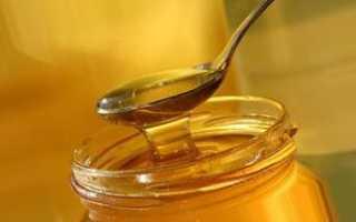 Производство меда: из чего пчелы делают мед, сбор нектара и пыльцы
