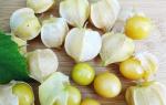 Физалис ананасовый: рецепты приготовления на зиму, выращивание, уход, фото