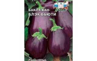 Баклажан Матросик: описание и характеристика сорта, урожайность с фото