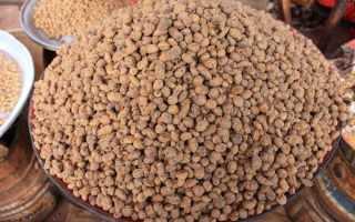 Чуфа, земляной миндаль, как выращивать чуфу, основные свойства, применение чуфы