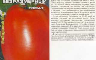 Томат Безразмерный: характеристика и описание сорта, отзывы, урожайность, сибирский сад