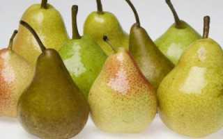 Можно ли замораживать груши? Методы заморозки