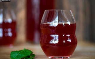 Вино из барбариса: рецепты с дрожжами и без
