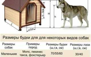 Будка для собаки утепленная чертежи