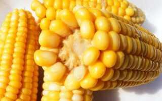 Как заморозить кукурузу на зиму в домашних условиях