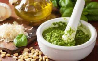 Домашний соус «Песто» – откроем тайну сокровенного вкуса! Рецепты приготовления соуса «Песто» с базиликом в домашних условиях, Женский интернет-дайджест