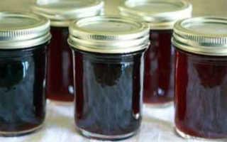 Компот из черемухи на зиму: 4 рецепта приготовления