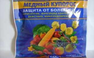 Медный купорос от фитофторы: как развести и обработать помидоры и другие овощи