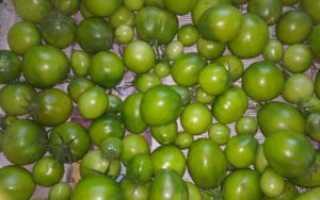 Зеленые Помидоры На Зиму (4 Самых Вкусных Рецепта), Всё о детях и семье