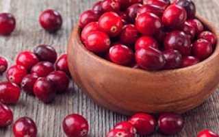 Брусника на зиму: лучшие рецепты с сахаром без варки, вино, джем, варенье, соус и моченая брусника — eТеплица
