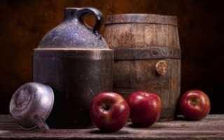 Cамогон из яблок в домашних условиях: простой рецепт