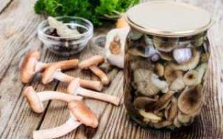 Помидоры с сельдереем на зиму: рецепты маринования с фото и видео