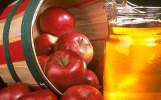 Домашнее яблочное вино пошаговый рецепт просто и быстро