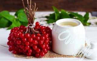 Калина с сахаром на зиму без варки – полезные свойства и рецепты