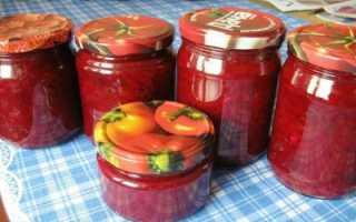 Салат «Алёнка» из свёклы на зиму: 3 рецепта приготовления ( отзывы)