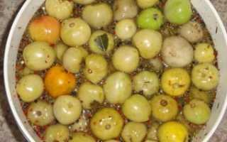 Засолка помидоров в ведре: рецепты как солить холодным способом
