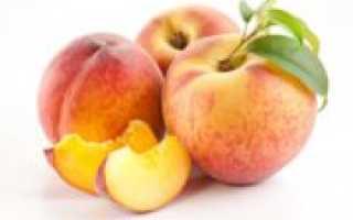 Как сушить персики в домашних условиях: чипсы, пастила и цукаты из персиков на зиму