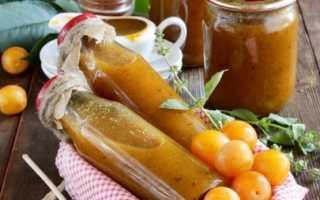 Ткемали из желтой алычи — рецепты по-грузински на зиму, с помидорами, с хмели-сунели и в мультиварке