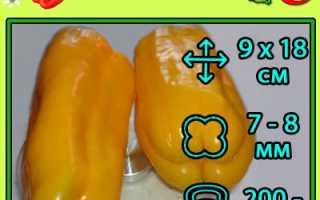 Перец Джемини F1 — отзывы дачников, описание особенностей сорта и выращивания