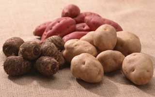 Благоприятные дни посадки картофеля в мае 2019 года