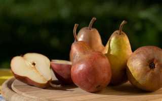 Моченые груши на зиму в банках, рецепт — Популярно о здоровье
