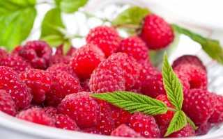 10 лучших сортов малины