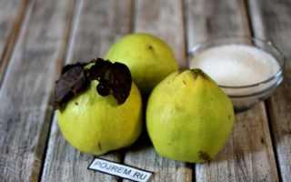Варенье из айвы в мультиварке — пошаговый рецепт с фото: как приготовить