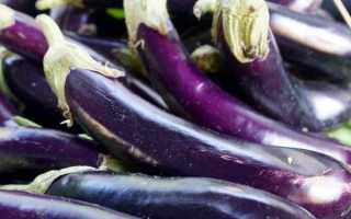 Баклажан Длинный фиолетовый: описание, фото, отзывы