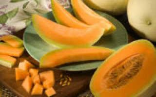 Как приготовить цукаты из дыни на зиму: лучшие рецепты цукатов из дыни в домашних условиях — Сусеки