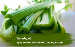Сельдерей для мужчин: польза корня и стеблей для мужского здоровья