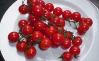 Томат черри — Вишня красная: описание сорта, его характеристики и фото, а также секреты выращивания