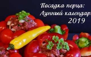 Лунный календарь-2019: Посадка рассады перца 2019, Дача