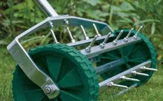 Аэратор для газона — механический, электрический и бензиновый, принцип работы и советы профессионалов
