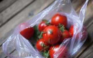 Малосольные помидоры быстрого приготовления с чесноком и зеленью в пакете