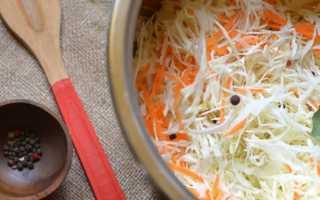 Лучшие сорта капусты для засолки и квашения, хранения на зиму: с описанием, характеристикой и отзывами, в том числе для выращивания в Сибири