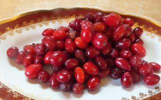 Компот из кизила: лучшая подборка рецептов – как варить кизиловый компот на зиму и на каждый день в кастрюле — Сусеки