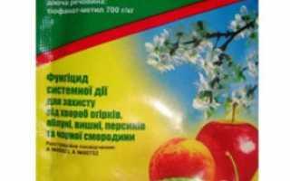 Фунгицид — Топсин-М: инструкция по применению против болезней полевых, плодовых культур, овощей и винограда