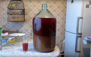 Рецепт самогона из сливы в домашних условиях, Алкопроф
