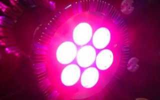 Как сделать подсветку для рассады светодиодными лампами