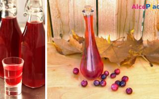 Вино из клюквы — рецепты приготовления в домашних условиях