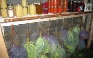 Как хранить капусту в подвале зимой либо в погребе, используя пищевую пленку и другие способы?