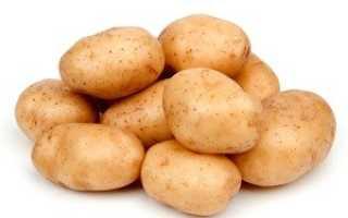 Картофель Удача: описание сорта, фото, отзывы